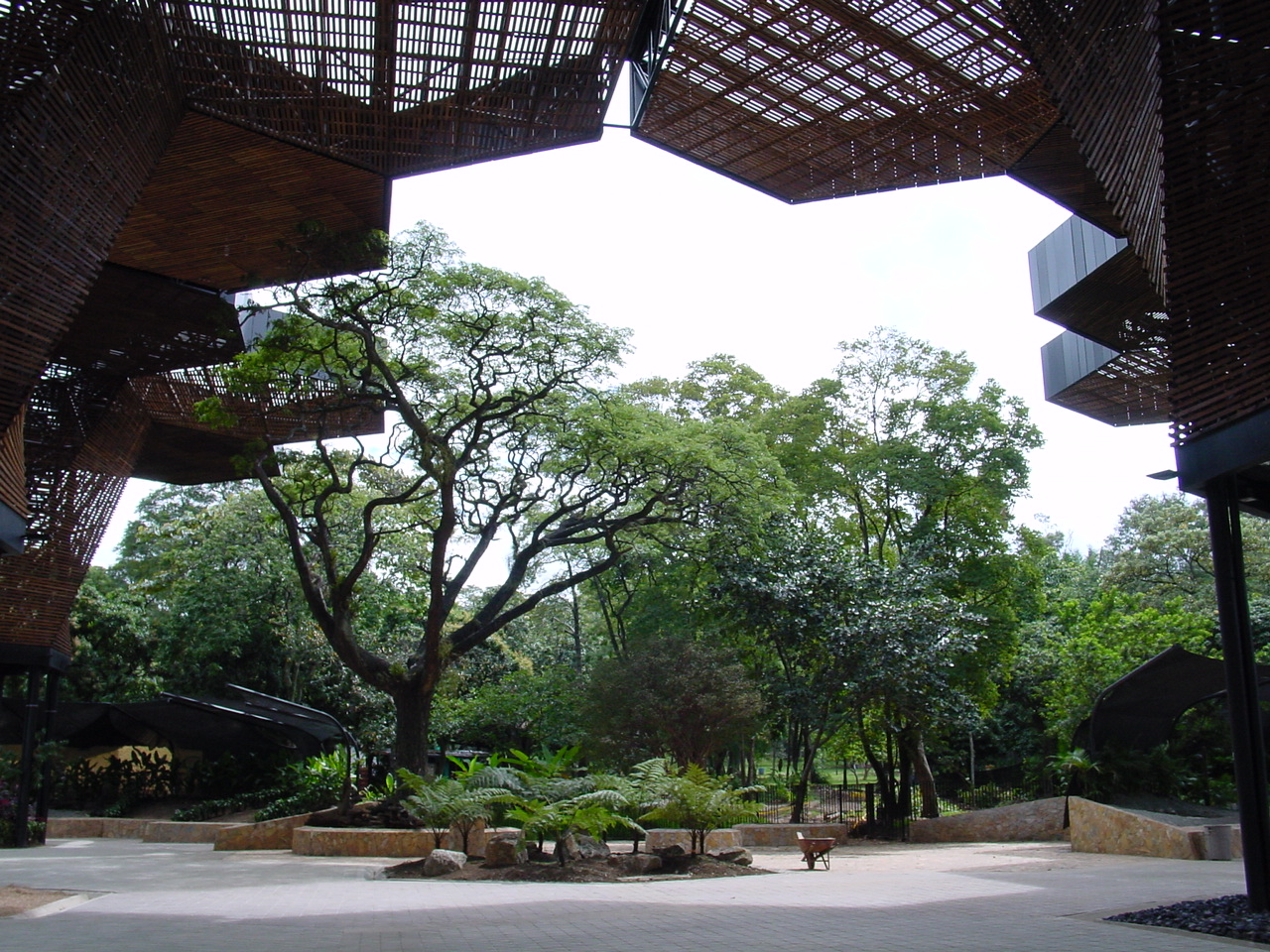 Orquideorama by plan b studio landscape architecture for Bodas en el jardin botanico medellin
