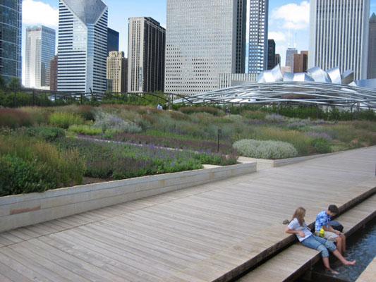 Lurie garden chicago 06 landscape architecture works for Piet oudolf landscape architect