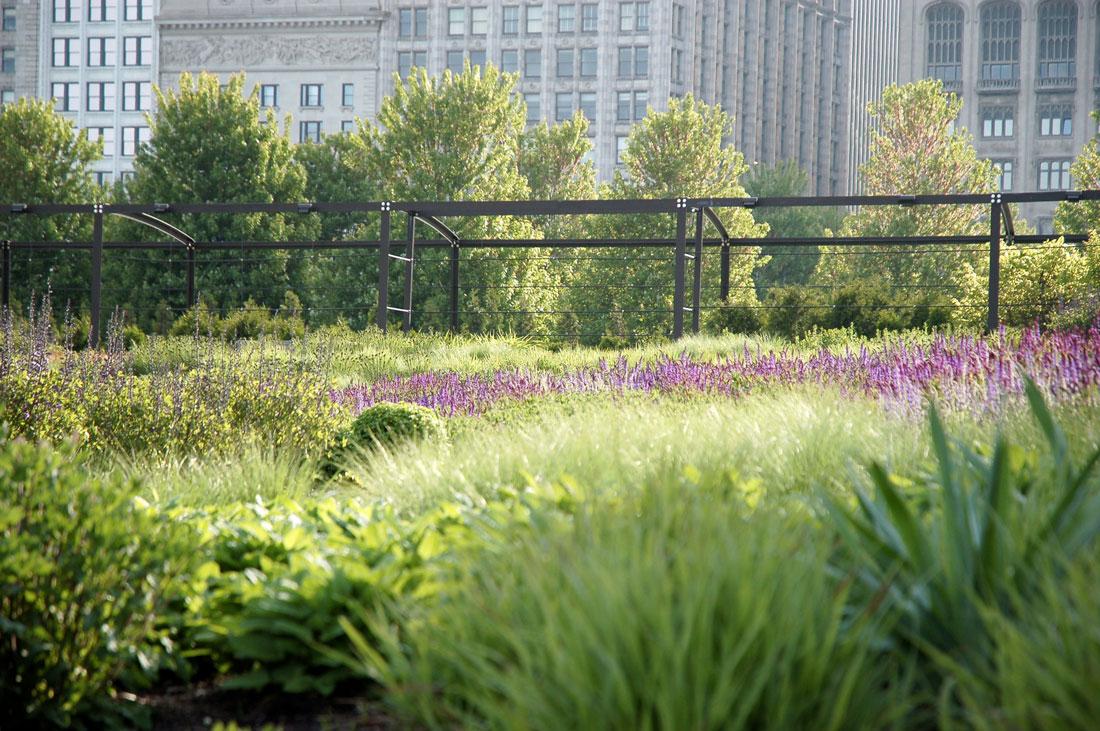 Lurie garden chicago 09 landscape architecture works for Lurie garden planting plan