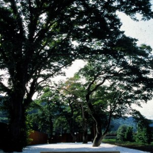 Echigo-Tsumari_Casagrande-&-Rintala_Potemkin-11