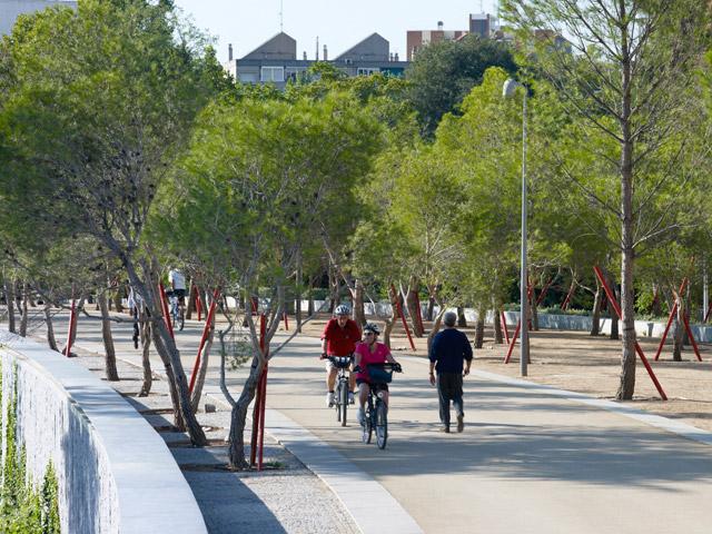 Salon de pinos 01 jeroen musch landscape architecture for West 8 architecture