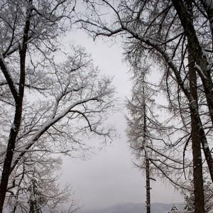 © Peter Koštrun