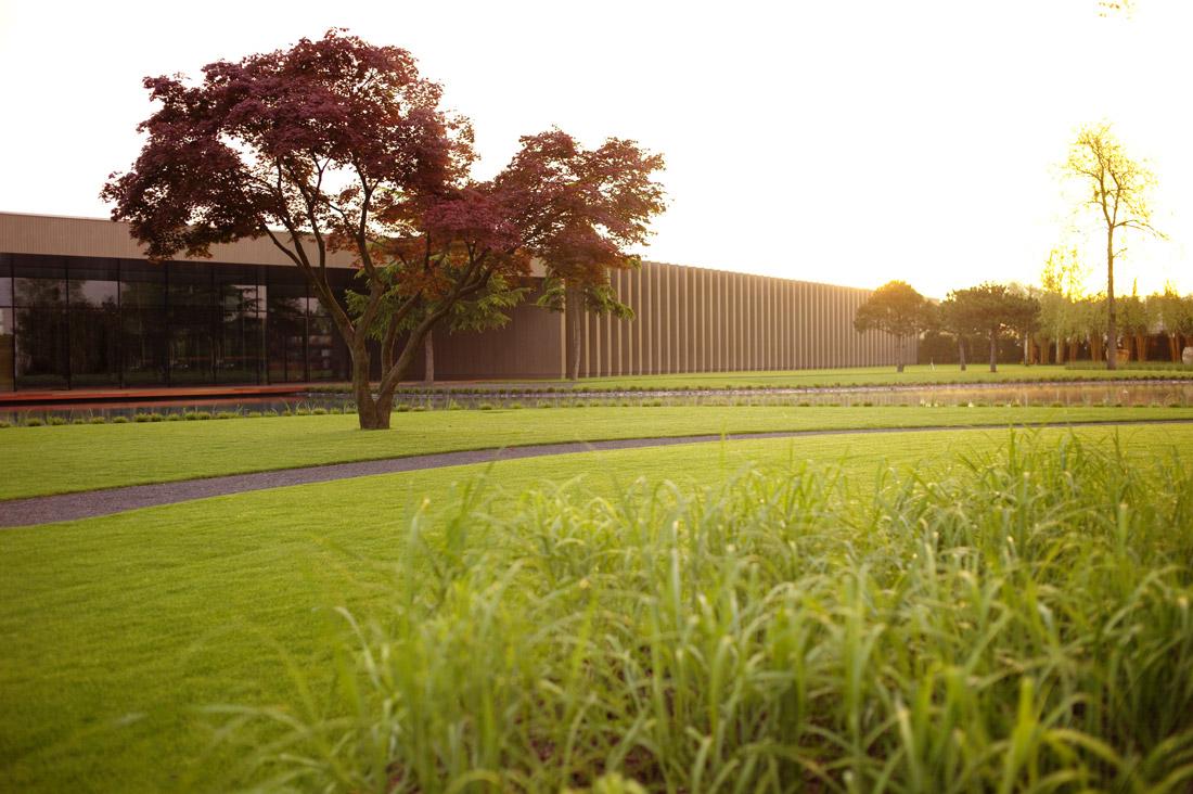 Tree museum by enzo enea landscape architecture works for Tree landscape design