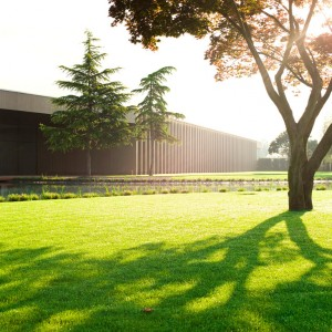 Tree museum-Enea Garden design 15
