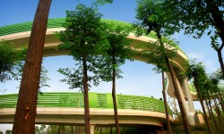 TURENSCAPE landscape architecture Suining Sleeve bridge 01