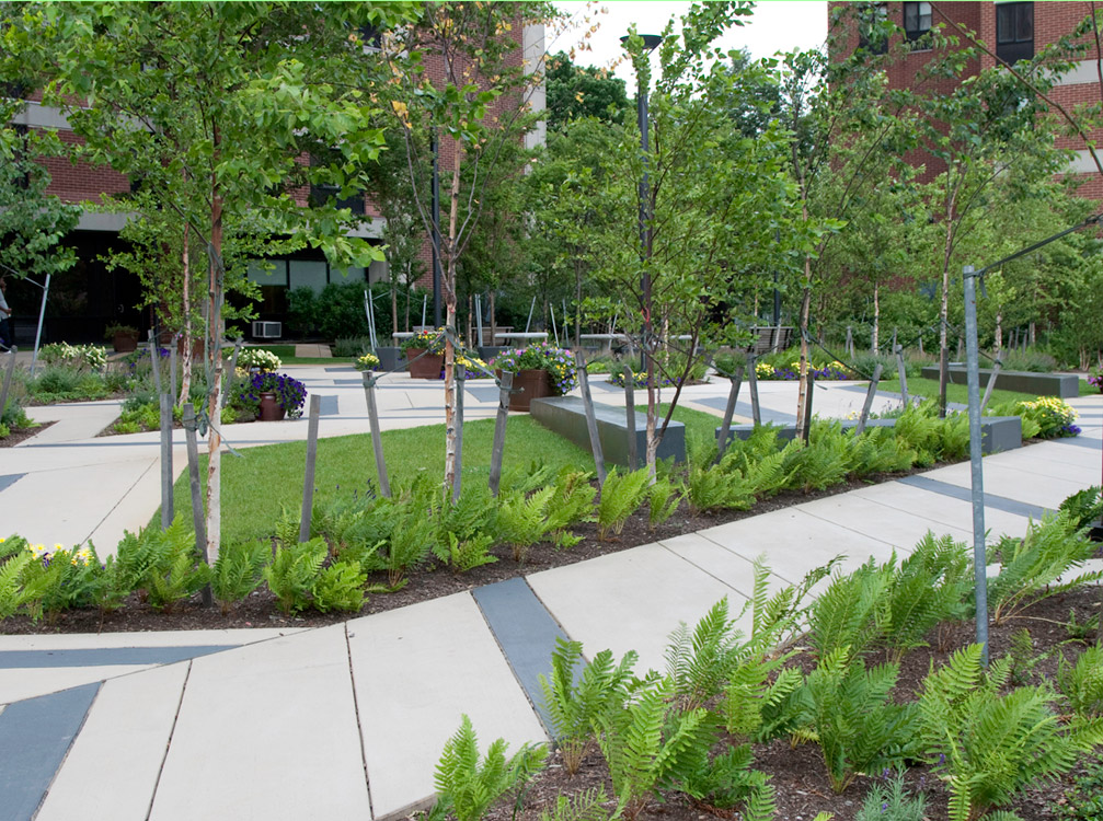 Levinson plaza by mikyoung kim landscape architecture for List of landscape architects