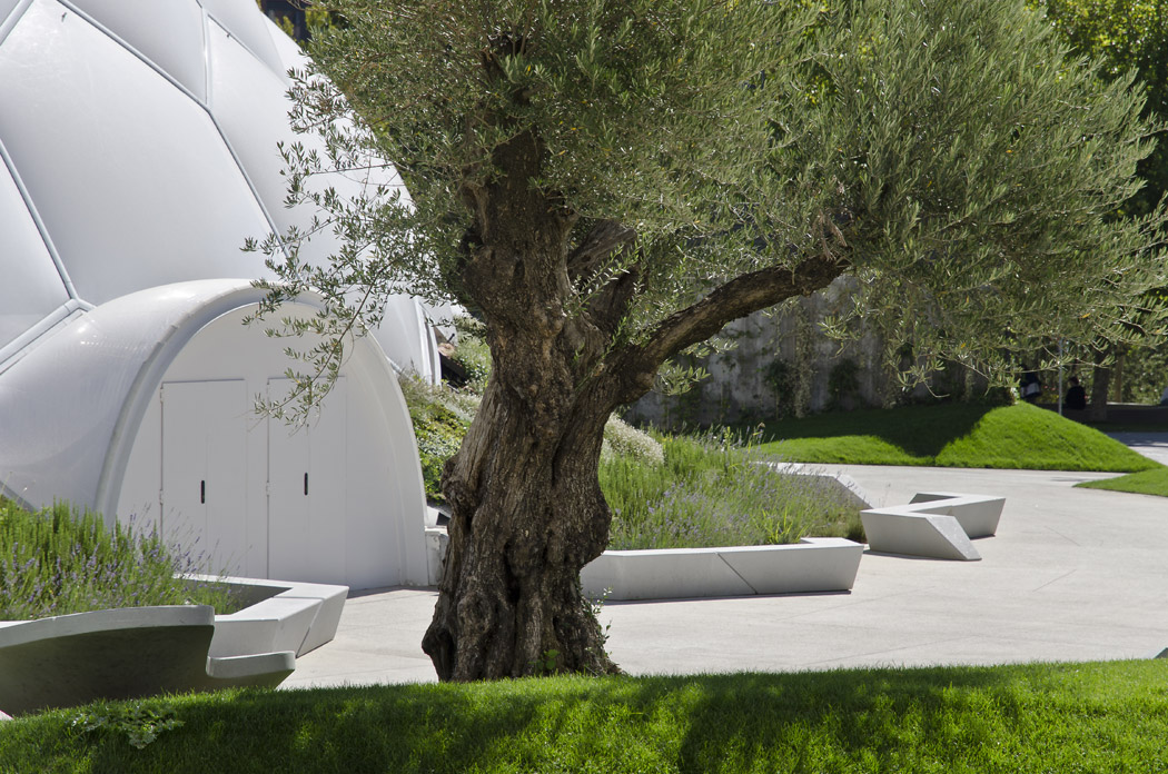 Plaza Del Milenio by EXP Architects « Landscape Architecture Works