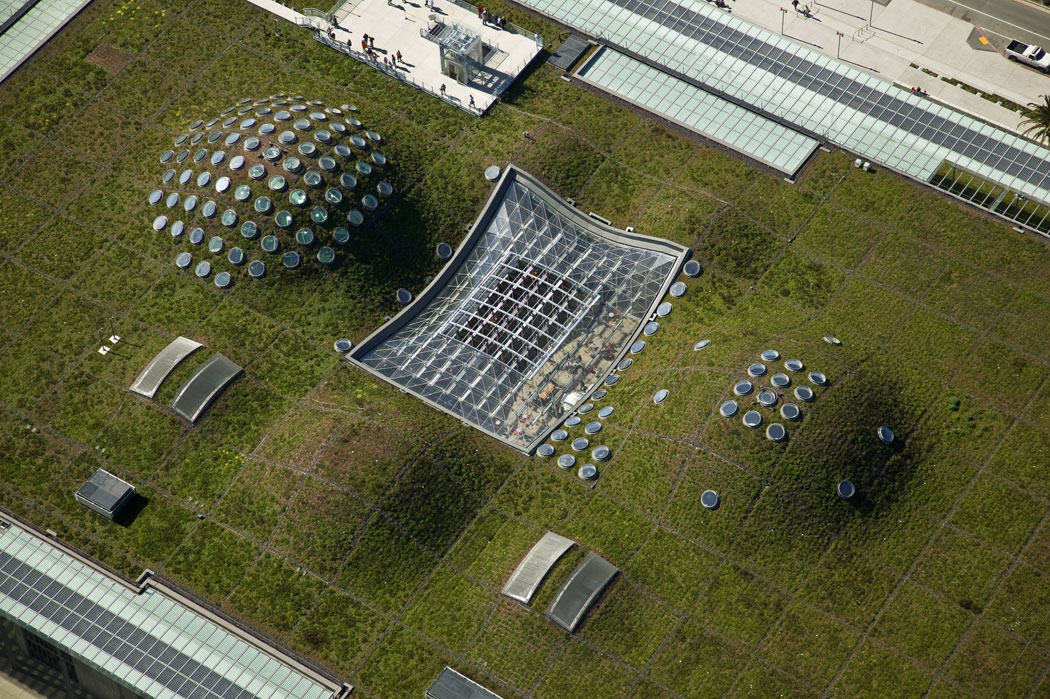 California Academy Of Sciences Living Roof By Swa Group 02