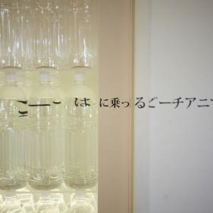 © Shin Suzuki