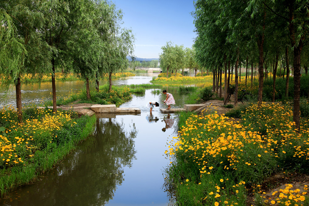 River Wetland Landscape Design
