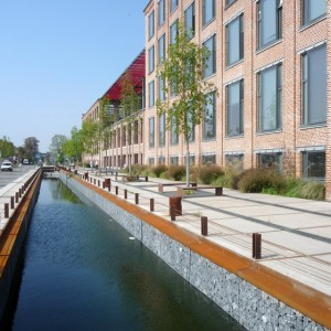 07-Main-Axis-Along-the-Rain-Water-Canal