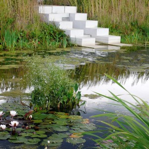 13-Nymphea-And-Concrete-In-The-Water-Garden