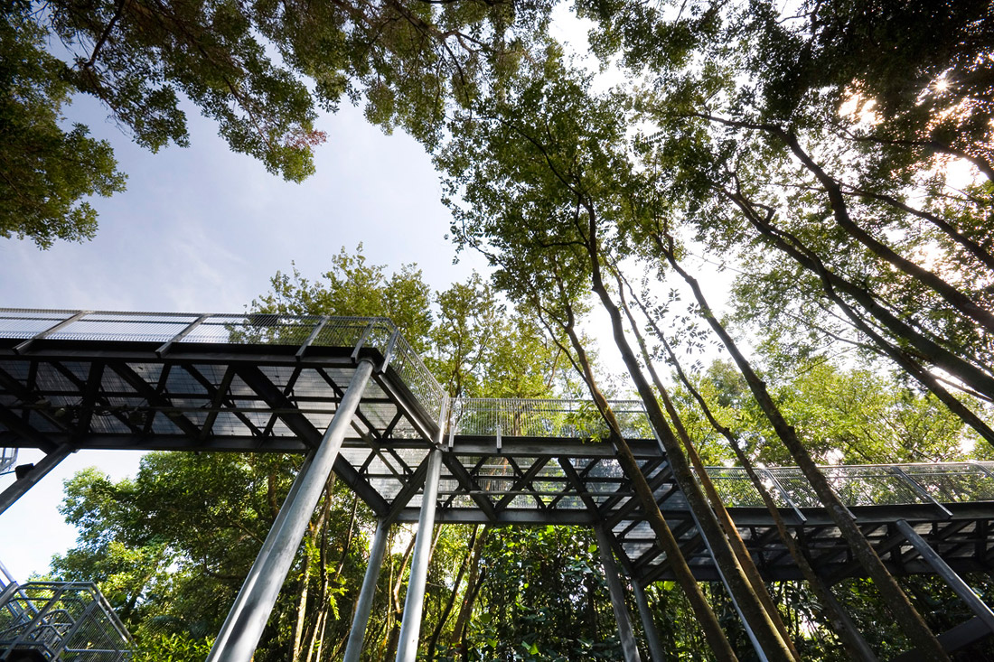 Forest walk by look architects 02 landscape architecture for List of landscape architects