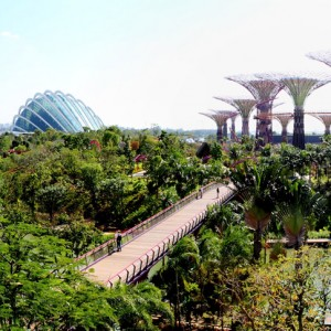Gardens by The Bay by Grant Associates « Landscape