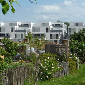 11-Shared-gardens-and-new-urban-density