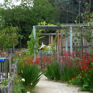 15-The-shared-gardens-at-the-heart-of-the-parc