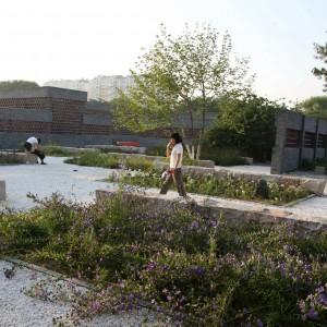 Qinhuangdao Botanic Garden By Turenscape