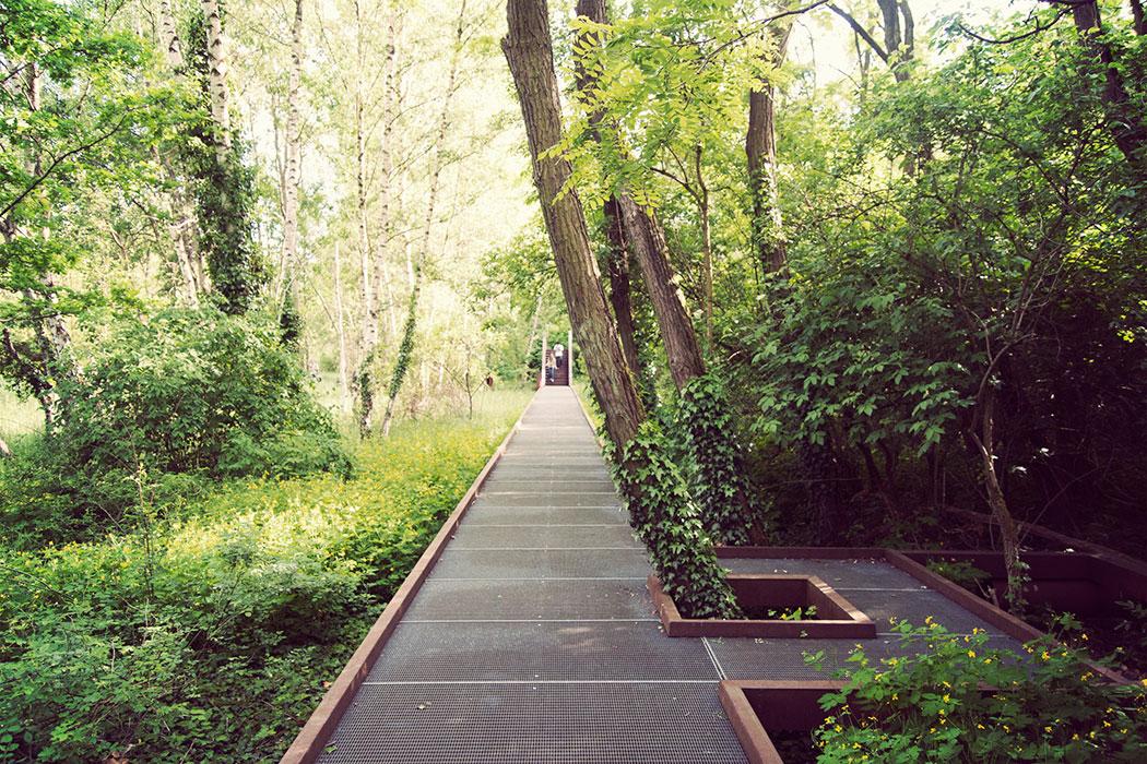 schoeneberg sudgelande 02 landscape architecture works landezine. Black Bedroom Furniture Sets. Home Design Ideas