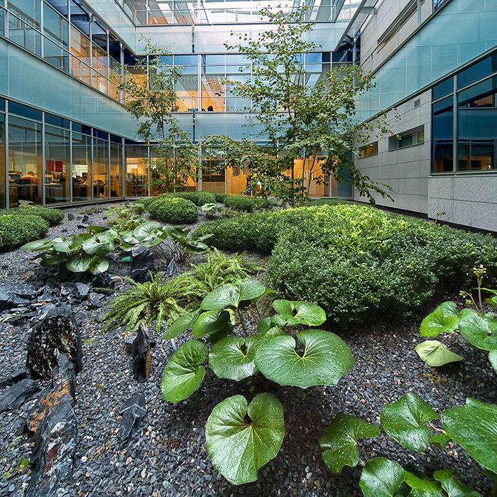Gorbea 4 atriums by studio urquijo kastner landscape for Architecture de jardin
