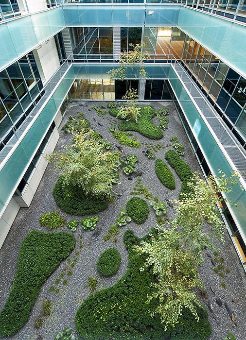 Gorbea 4 atriums by studio urquijo kastner landscape for Studio 11 architecture