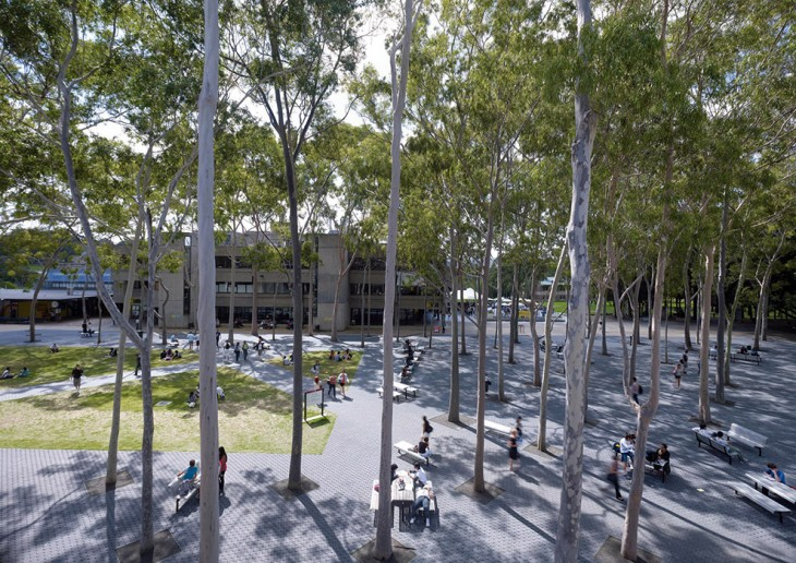 Macquarie university central courtyard by hassell for Landscape architecture courses sydney