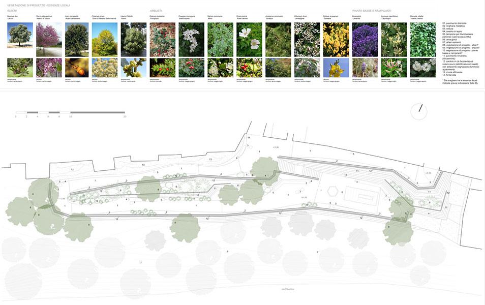 Landscape Architecture Planting Diagram