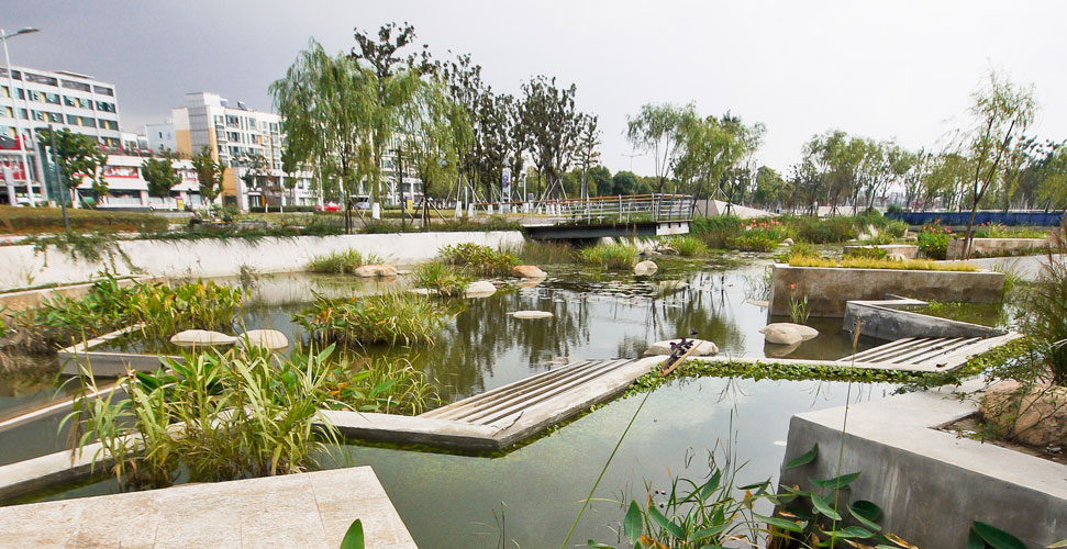 Lotus lake park by integrated planning and design inc for Park landscape design