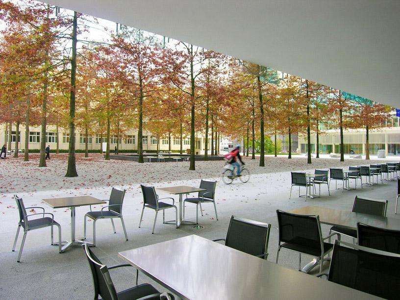 landscape architect research paper