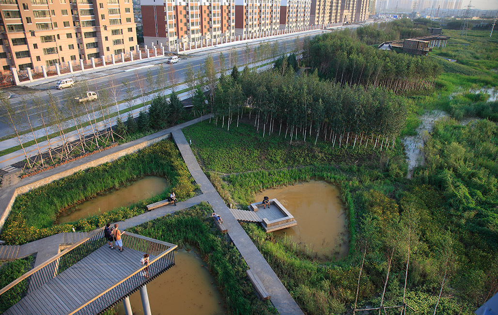 Qunli national urban wetland by turenscape landscape for Landscape architecture
