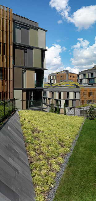 Ulus savoy housing by ds architecture landscape 18 for Landscape architecture adelaide uni
