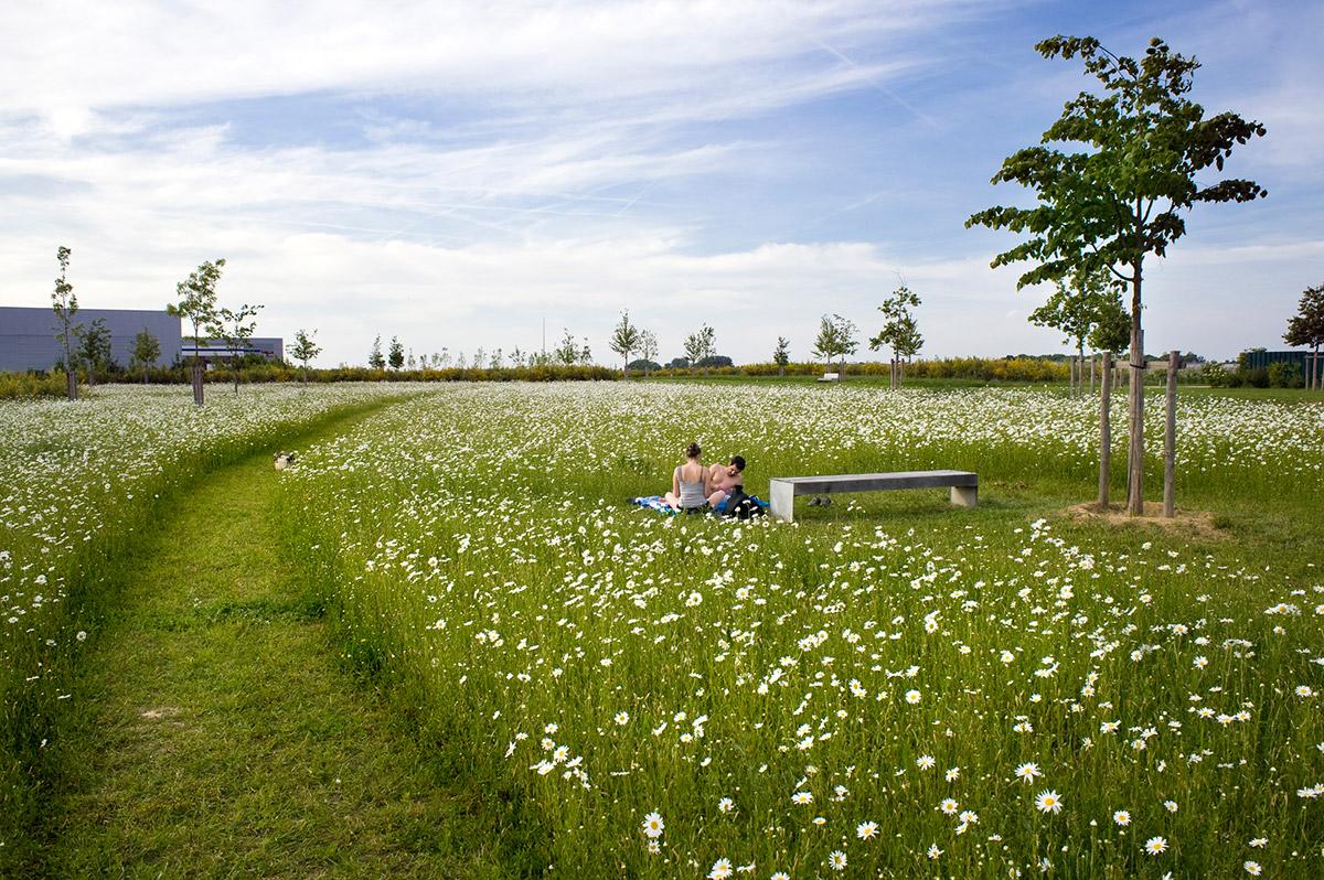 Mont evrin park by urbicus landscape architecture works for Landscape architecture