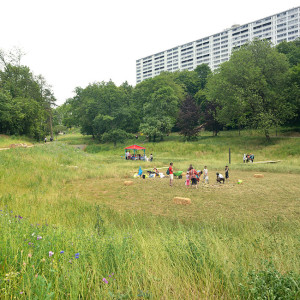 "A key public space of the major urban plan for La Duchère, this park revitalises a geography that has been mistreated by history while developing ""urban nature"" that links and bonds the area together. Used as a spoils storage site during the creation of the ""Grand Ensemble"" major housing complex, this small valley was mistreated over time by water engineering works (pipes) that are purely functional."