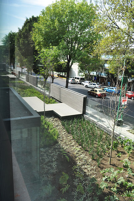 Coyoacan Corporate Campus By Dlc Architects 11 Landscape
