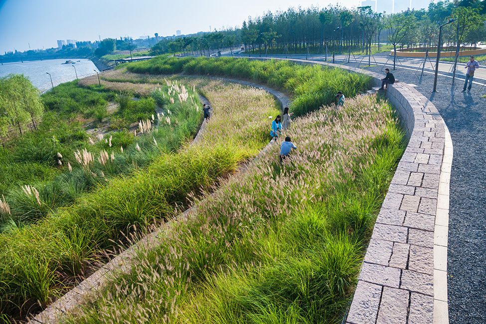 12 yanweizhou terrace landscape architecture works for Design of pond embankment