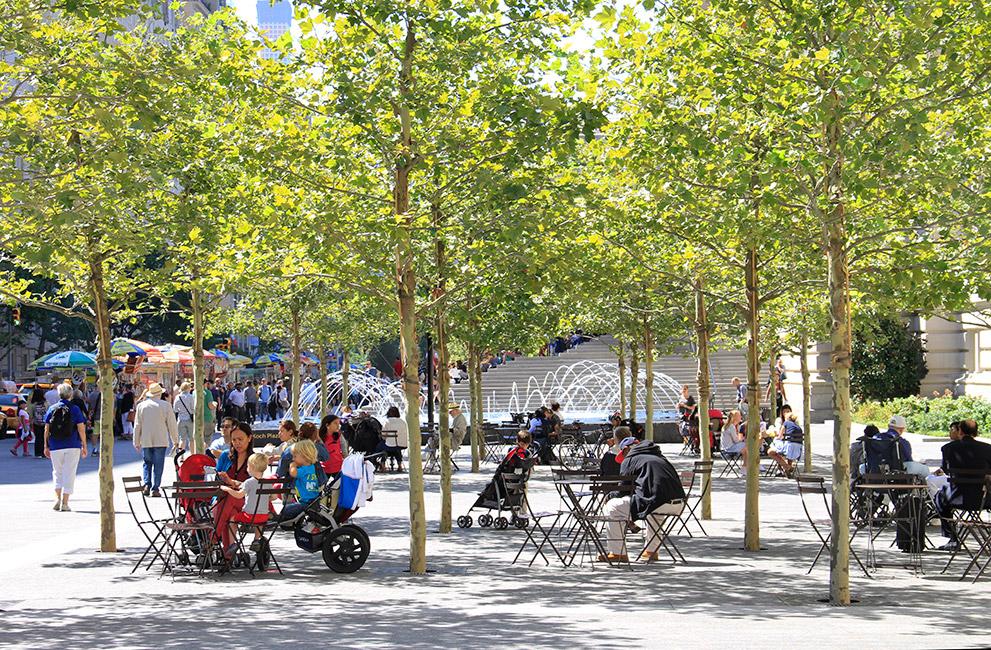 树阵广场及林下休息空间