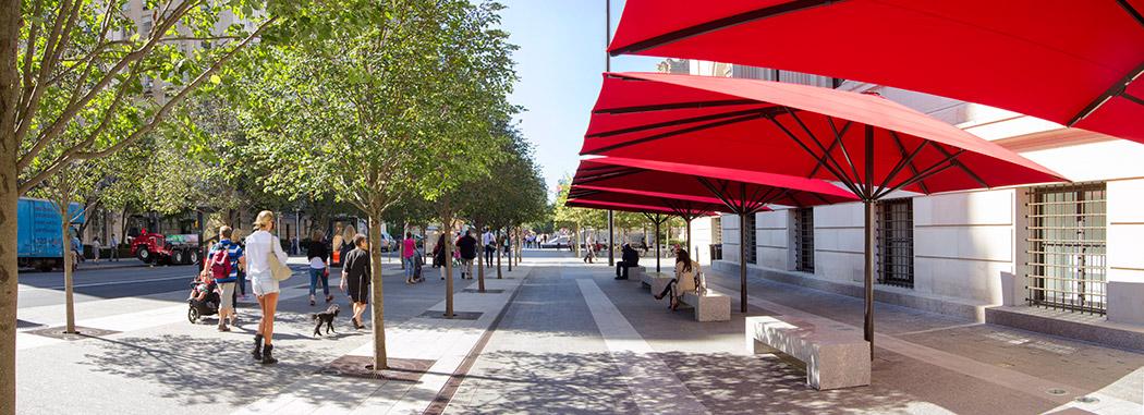 街道树阵广场及阳伞坐凳