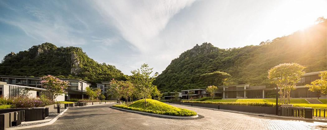 公寓园路植物景观