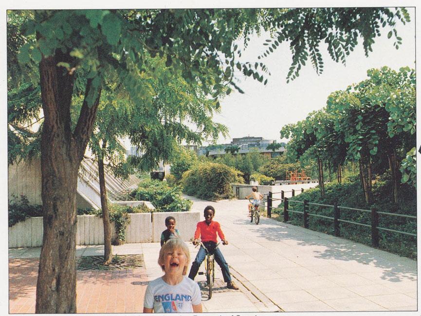 Alexandra Road Park Restoration By JL Gibbons Landscape Architects