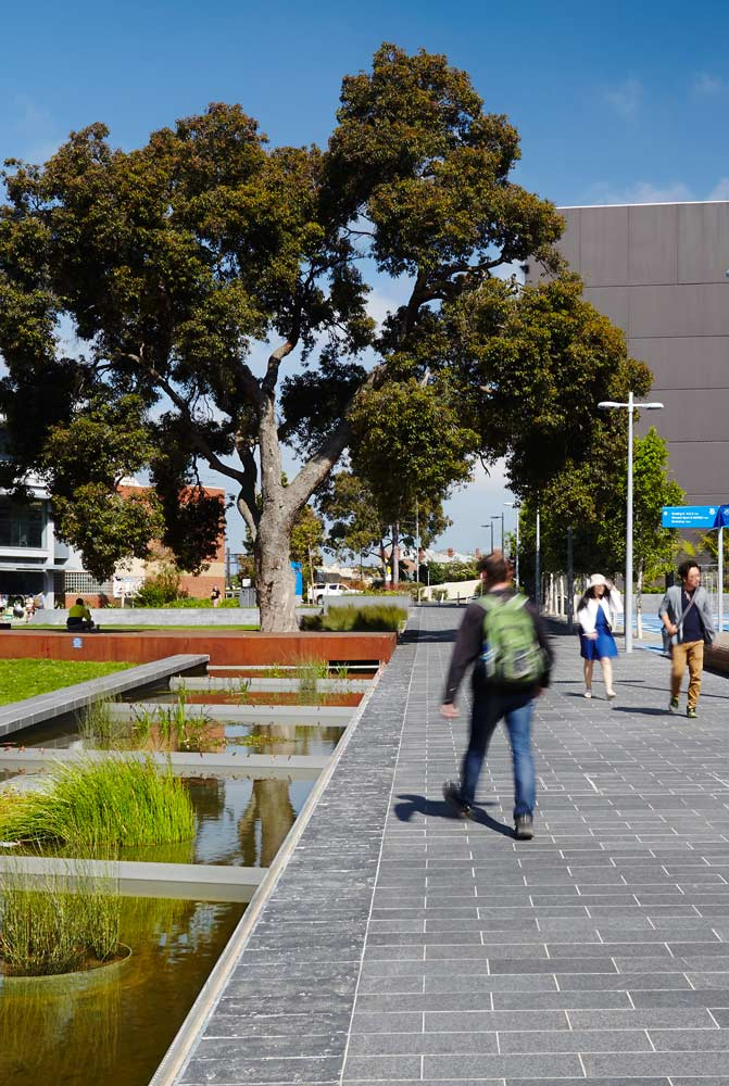 Tcl monash uni caulfield campus green andrew lloyd 08 for Tcl landscape architects adelaide