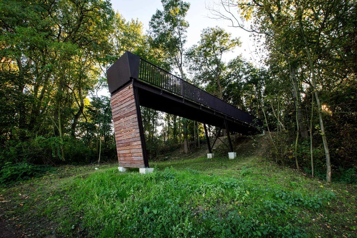 ww1 landscape memorial forest - photo #13