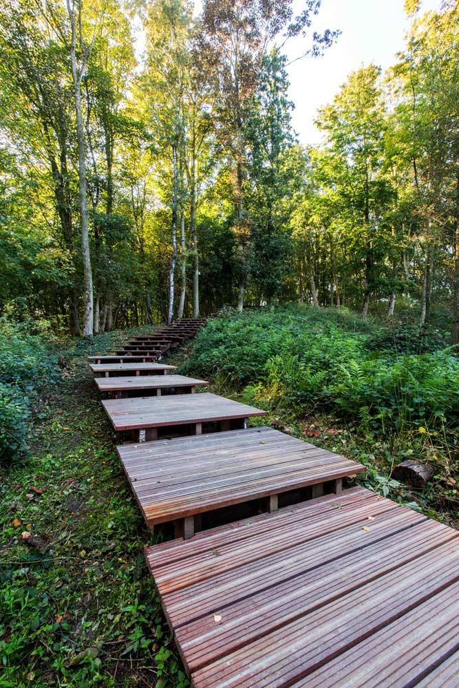 ww1 landscape memorial forest - photo #9