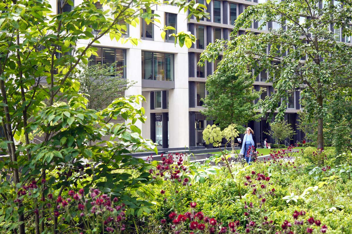 Pancras square by townshend landscape architects for Townshend landscape architects