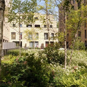 © Townshend Landscape Architects