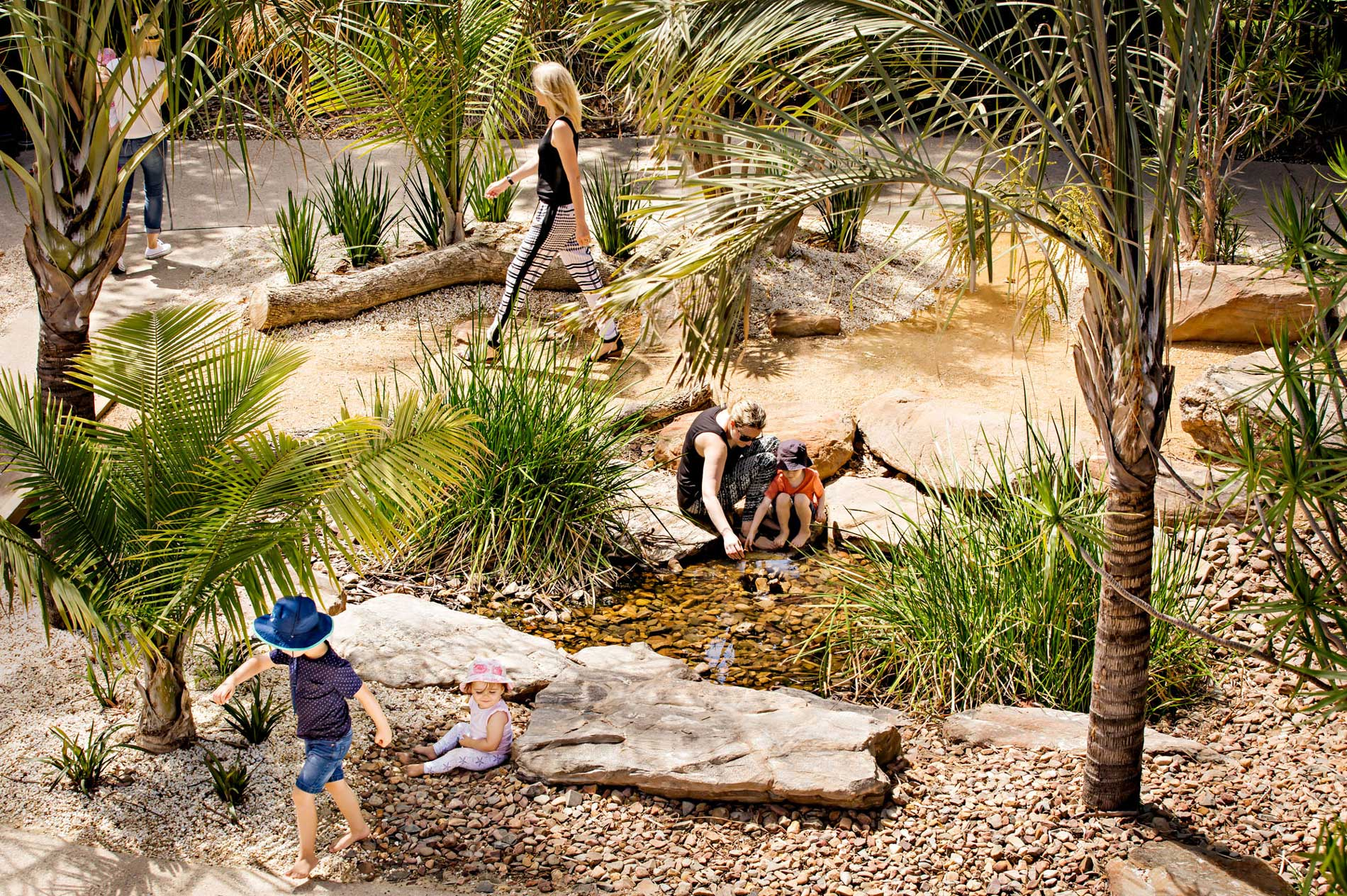 Adelaide zoo play space nature wax design 06 landscape for Landscape architecture adelaide