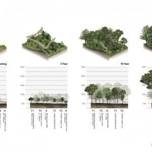 the metro forest project by lab landscape architecture. Black Bedroom Furniture Sets. Home Design Ideas