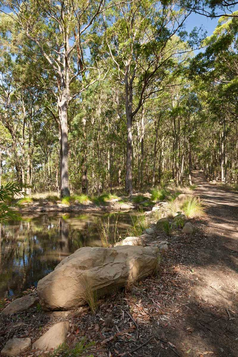Forest Edge Garden-2 « Landscape Architecture Works | Landezine