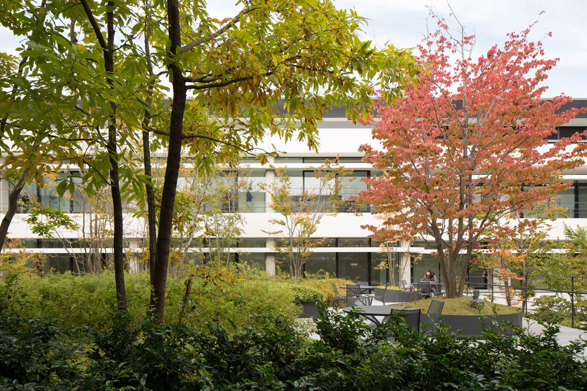 Daiichi mutual insurance shin ohi office landscape by for Office landscape