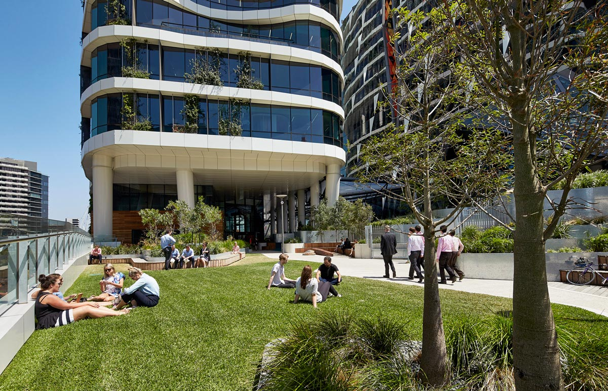 Medibank place by hassell landscape architecture works for Place landscape architecture