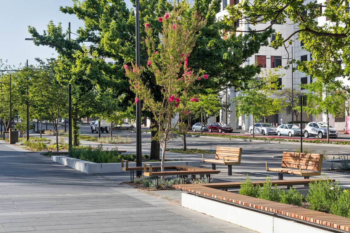 Constitution avenue canberra by jane irwin landscape for Landscape architect canberra