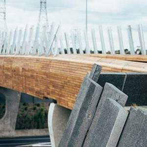 Isthmus_Taumanu_Reserve_Bridge_1